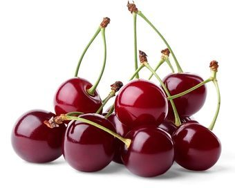 purchase sweet red cherries from mcintosh orchard central otago